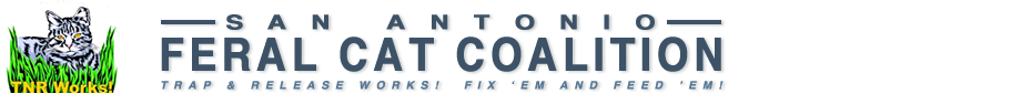 safcc_logo